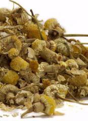 Økologisk urte te